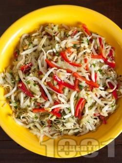 Салата от кълнове - соеви, броколи и люцерна, краставица и чушки - снимка на рецептата